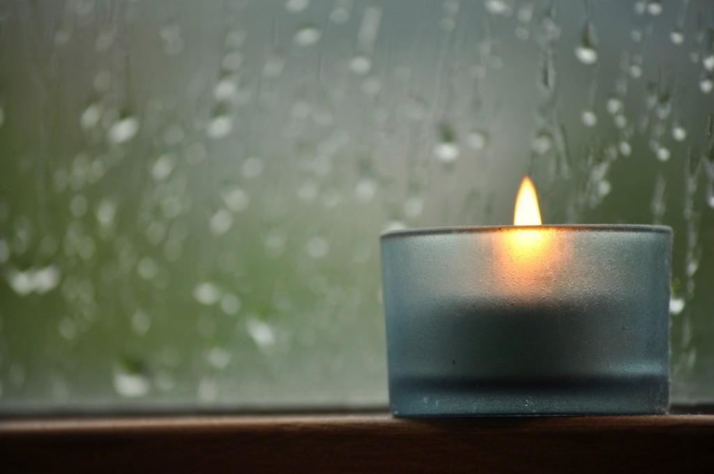 Rainy morning with....