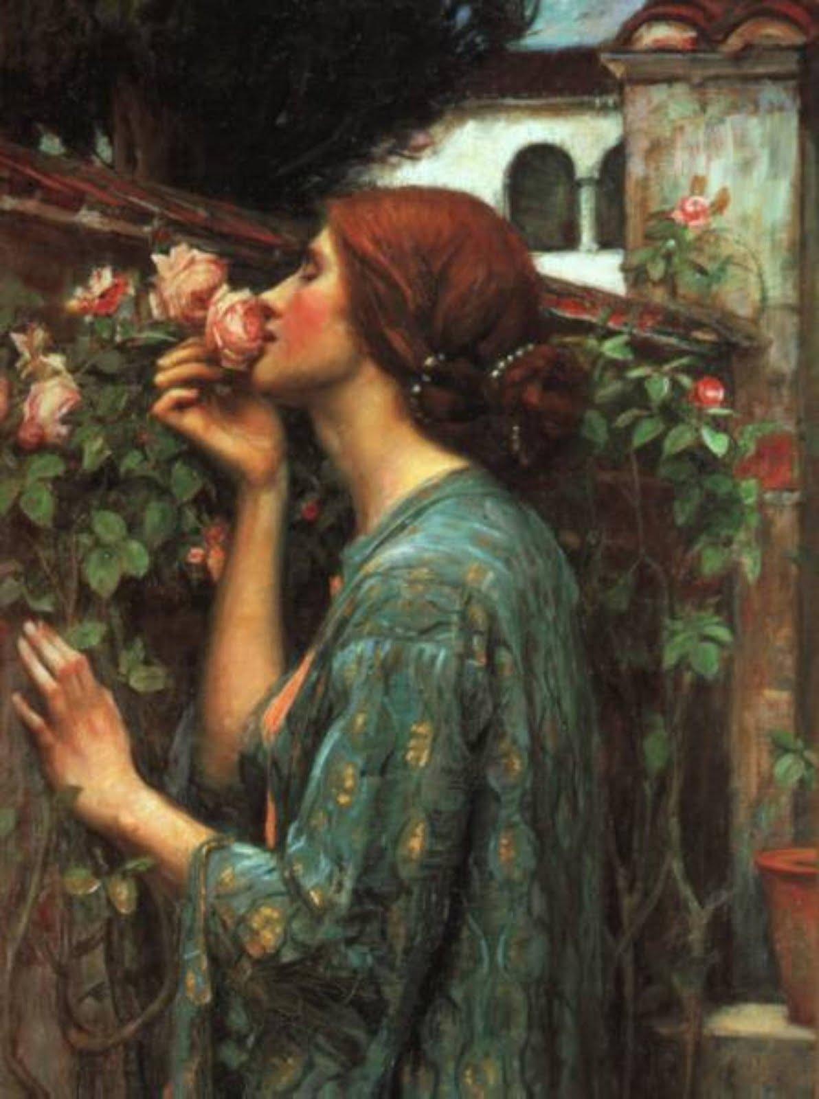 Waterhouse roses full length best